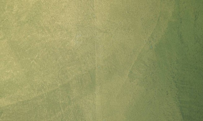 Viero-Catalog_Decorative-paint-plaster_Dekorfarben_stucco_Stuck_Silk-Velvet_3-655x390